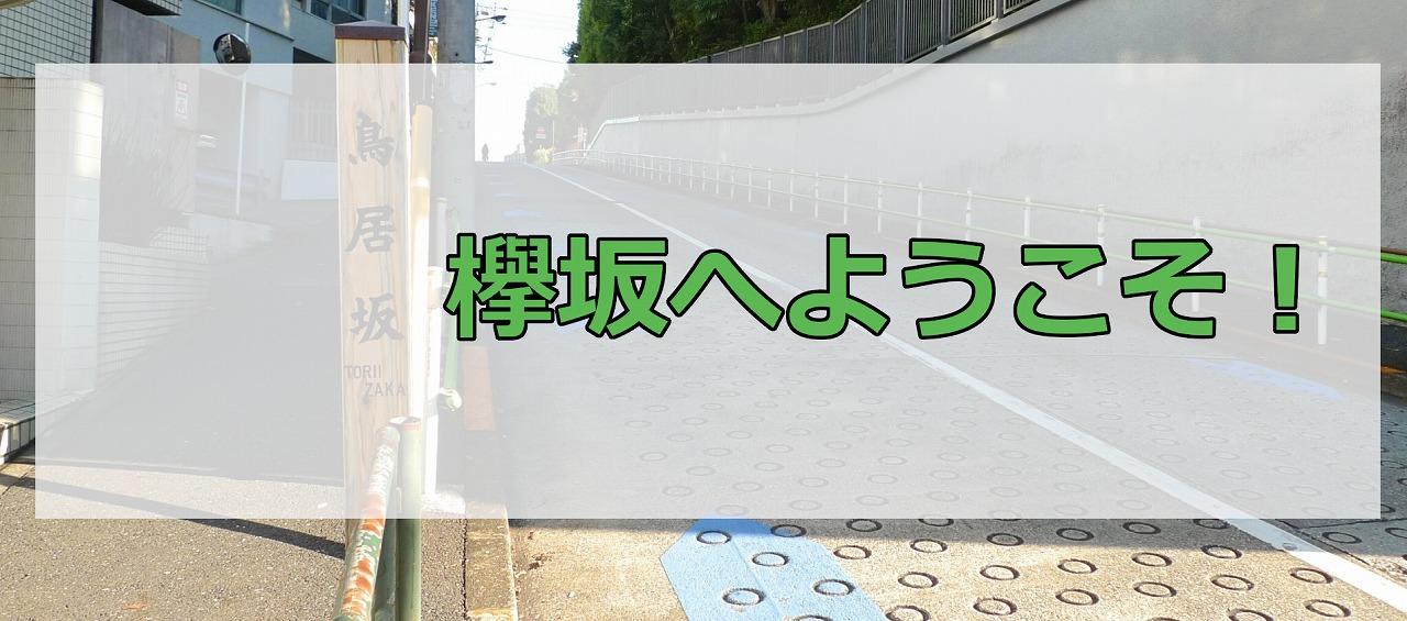 欅坂へようこそ!
