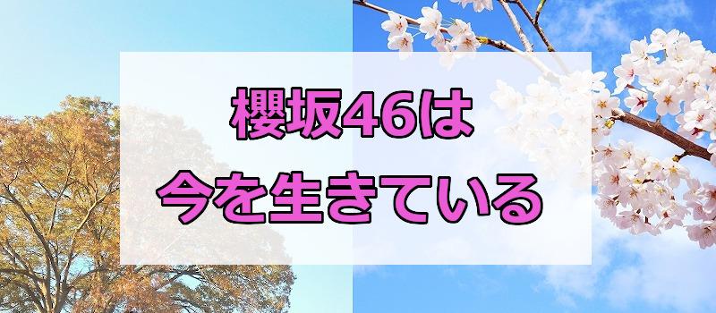 櫻坂46は今を生きている