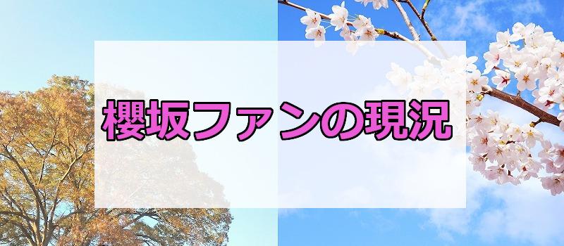 櫻坂ファンの現況